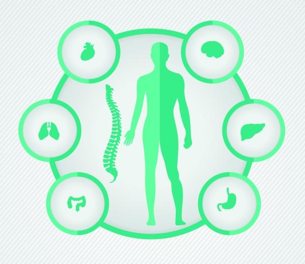Diagnostika- hladanie príčin ochorenia